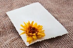 מעטפה עם פרח